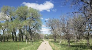 High Plains Arboretum Is A Fascinating Spot in Wyoming That's Straight Out Of A Fairy Tale