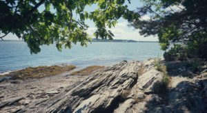 Mackworth Island State Park In Maine Is So Well-Hidden, It Feels Like One Of The State's Best Kept Secrets