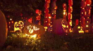 Why New York's Great Jack-O-Lantern Blaze Is the Best Way To Celebrate Halloween