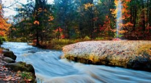 5 Gorgeous Hikes and Landscapes Perfect For Enjoying Fall In Albany