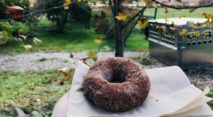 This Cider And Donut Mill In Rhode Island Will Put You In The Mood For Fall