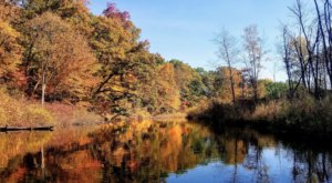 Experience The Fall Colors Like Never Before With A Stay At Proud Lake Campground Near Detroit
