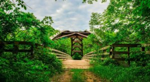 There's A Secret Bridge Hidden In The Chengwatana State Forest In Minnesota, And It Is Truly Beautiful
