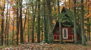 9 Charming Cabin Rentals In Kentucky Where You Can Stay For Less Than $200 Per Night