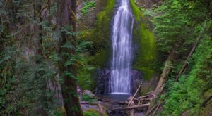 Marymere Falls Trail Is A 1.7-Mile Hike In Washington That Leads You To A Pristine Waterfall