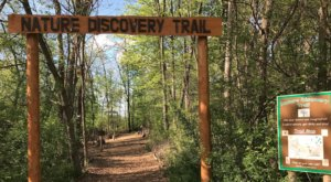 The Trail Near Detroit That Will Lead You On An Adventure Like No Other