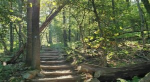 Scramble Your Way Up Bearfence Mountain, A 1-Mile Trail With Some Of The Best Views In Virginia