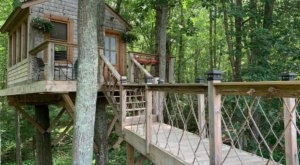 There's A Treehouse Airbnb In Rhode Island And It's The Perfect Little Hideout