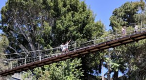 The Exhilarating Seven Bridge Walk In Southern California That Everyone Must Experience At Least Once