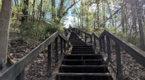 Hike This Stairway To Nowhere Near Detroit For A Magical Woodland Adventure