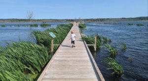 Walk On Water When You Explore The Whimsical Arcadia Marsh Boardwalk In Michigan