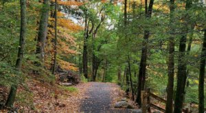 A Short But Beautiful Hike, The Enders State Forest Trail Leads To A Little-Known Waterfall In Connecticut