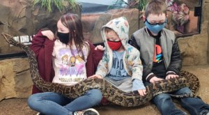 The Reptarium Is A Reptile Zoo In Michigan Where You Can Interact With Incredible Creatures