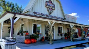 Bayne's Apple Valley Is A Small Town Orchard In Michigan That Offers Something For Everyone