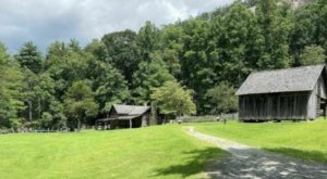 Hike Through A Former 170-Year-Old Homestead In North Carolina At Stone Mountain State Park