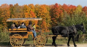 Nothing Says Fall Is Here More Than A Visit To New Hampshire's Charming Apple Farm