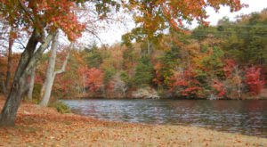 8 Reasons Why DeSoto State Park Is Alabama's Ideal Getaway Destination For Fall