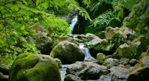 Maunawili Falls Trail Is A Beginner-Friendly Waterfall Trail In Hawaii That's Great For A Family Hike