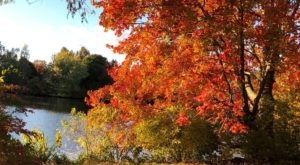 Take A Gorgeous Fall Hike Through Roger Williams Park In Rhode Island