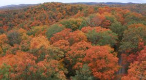 This Stunning Drone Footage Caught Some Of The Year's Peak Fall Colors In West Virginia