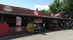 Stop By Layne's Country Store For A Famous Virginia Ham And Cheese Sandwich