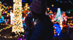 The Whimsical Zoo Lights Experience In Maryland Will Take You On A Spectacular Nighttime Adventure
