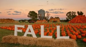 Lone Star Family Farm In Texas Has Endless Fall Fun For The Whole Family