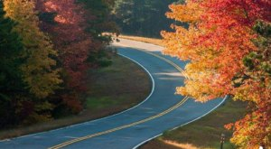 There's No Better Place To View Fall Foliage In Oklahoma Than Along The Talimena National Scenic Byway