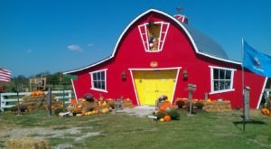 Spend The Day At Annabelle's Fun Farm And Enjoy The Magic Of Fall In Oklahoma