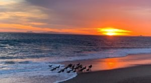 Point Mugu State Park Is A Scenic Outdoor Spot In Southern California That's A Nature Lover's Dream Come True