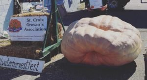 A Nearly 2,000-Pound Pumpkin Recently Broke Minnesota's Largest Pumpkin Record At Stillwater Harvest Fest