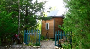 Sleep Soundly In A Tiny House Cabin In The Forest In Perry, Kansas
