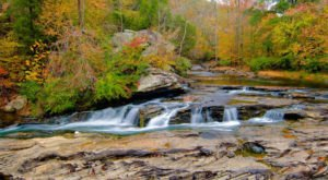 You'll Be Surrounded By Beautiful Fall Colors At Alabama's Turkey Creek Nature Preserve