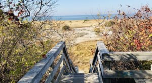 Take An Easy Loop Trail Past Some Of The Prettiest Scenery In Massachusetts On The John Wing Trail