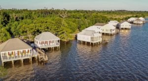 Fontainebleau State Park Cabins Offer The Best Views In Louisiana