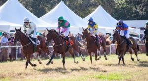 For A Day Of Groundbreaking, Family-Friendly Fun, Head To The Annual Steeplechase Of Charleston In South Carolina