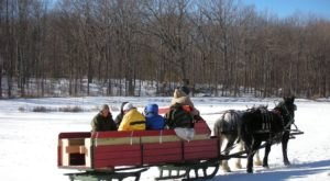 The 45-Minute Connecticut Sleigh Ride At Wood Acres Farm Takes You Through A Winter Wonderland