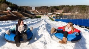 Tackle An 8-Story-High Snow Tubing Hill At Snow Island At Margaritaville In Georgia This Year