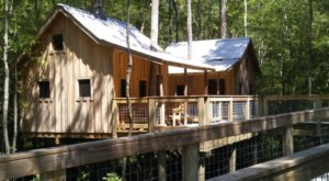 There's A Treehouse Village In North Carolina Where You Can Spend The Night