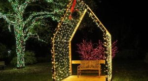 Wander Through 10 Acres Of Holiday Lights At Redding Garden Of Lights In Northern California