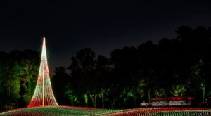 Georgia's Enchanting 5-Mile Fantasy In Lights Holiday Drive-Thru Is Sure To Delight