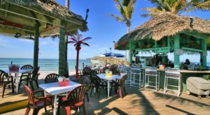 Sharky's On The Pier In Florida Is A Tropical, Pier-Front Paradise Waiting To Be Savored