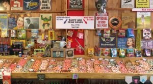 Find More Than 1,000 Candies and Sodas at Rocket Fizz, the Largest Discount Candy Shop in Washington