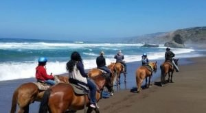 Soak In Views Of Surf And Sand On This Guided Horseback Ride On Manchester Beach In Northern California