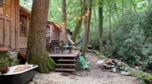 You'll Have A Front Row View Of The North Carolina Pisgah National Forest In This Cozy Cabin