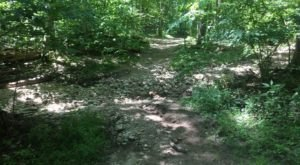 Take An Easy Loop Trail Past Some Of The Prettiest Scenery In Missouri On Eagle Valley Loop Trail