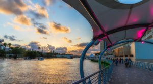Take A 2.6-Mile Stroll Along The Tampa Riverwalk In Florida