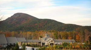 Explore Over 20-Acres Of Vineyards And Georgia's Only Wine Cave At Yonah Mountain Vineyards