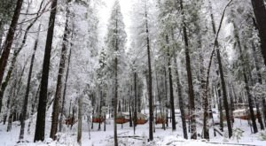 The Most Enchanting Winter Camping Spot In Northern California Can Be Found At The Inn Town Campground