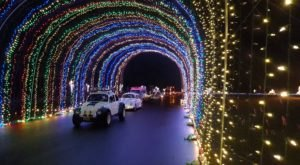 The 14 Best Drive-Thru Christmas Lights Displays In America The Whole Family Can Enjoy